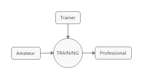 Amateur Trainer Training Professional